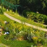 bronzette-pique-nique-parc-daily-belleville