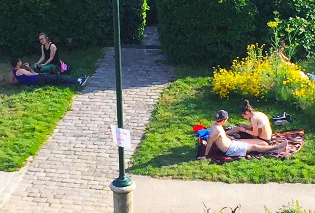 dejeuner-sur-herbe-parc-daily-belleville