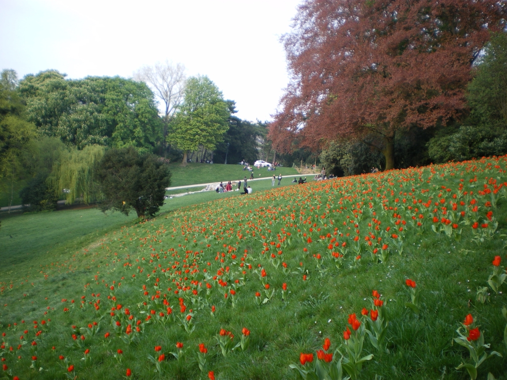 parc-buttes-chaumont-75019-paris-east-village-tulipe